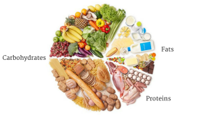 Macronutrients, calories